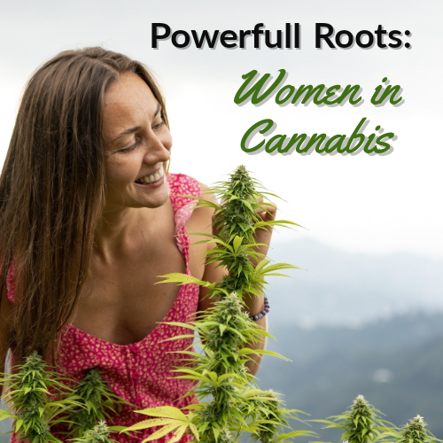 Powerful Roots: Women in Cannabis
